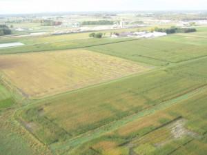 Marshfield ARS - South Farm